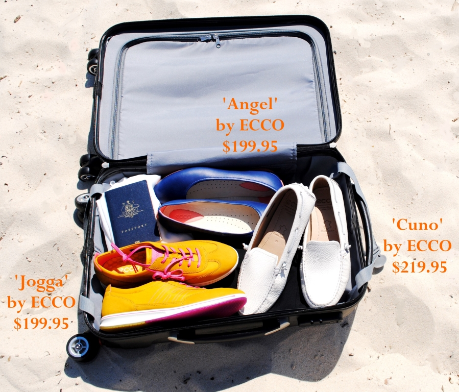 ECCO shoes and suitcase